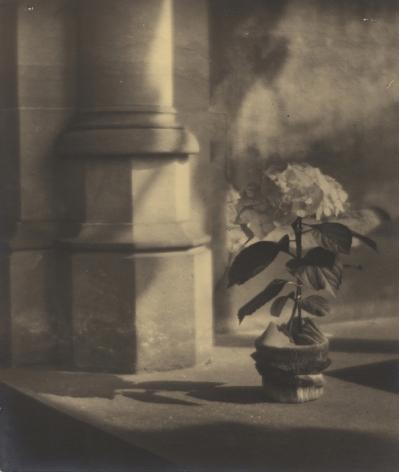 Jaromir Funke, Untitled, c.1920-24, Gelatin silver print, Howard Greenberg Gallery, 2019