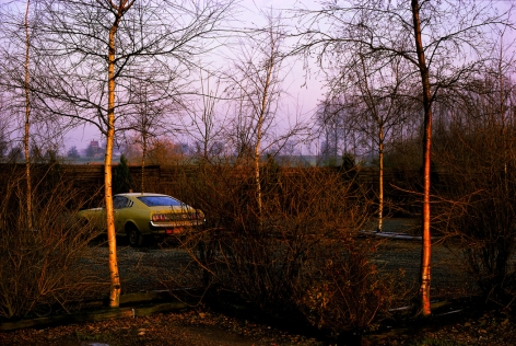 Harry Gruyaert - Province of Limburg, Belgium, 1988 - Howard Greenberg Gallery - 2018