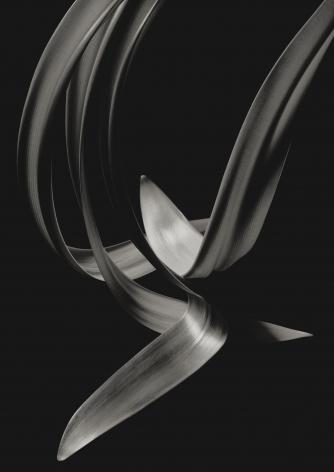 Kenro Izu - Still Life #653, 1998 - Howard Greenberg Gallery