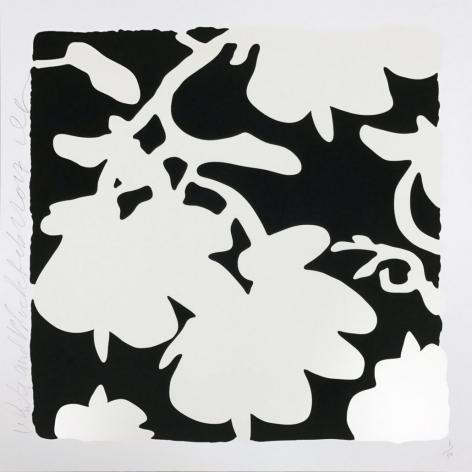 Lantern Flowers (White and Black)