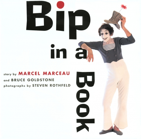Bip In A Book