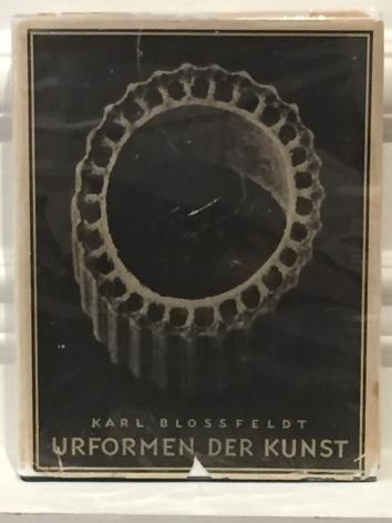 Karl Blossfeldt; Urformen der kunst