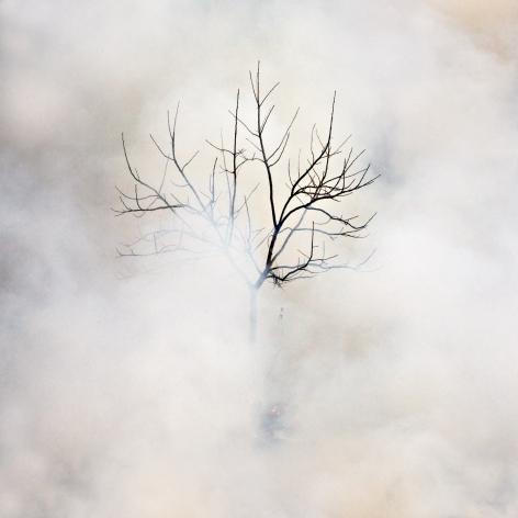 Jane Fulton Alt, Burn No. 26, fire, landscape, Sous Les Etoiles Gallery