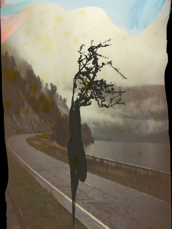Susanne Wellm, Inner Landscapes, Sous Les Etoiles Gallery, road with a twig, 2011