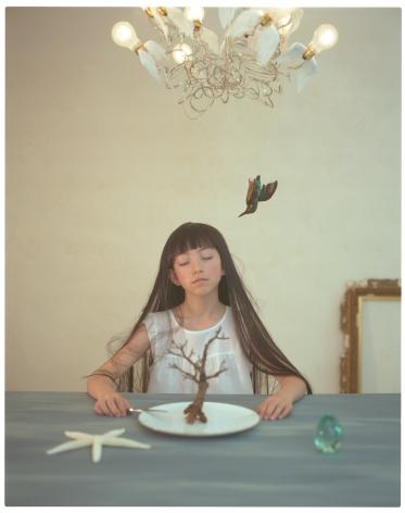 Breezeless, Haruhi Fujii, Les rêves d'un oiseau solitaire, 2009, Sous Les Etoiles Gallery