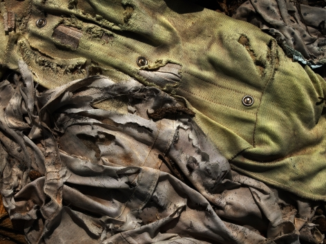 David Zimmerman, Last Refuge, Untitled (last refuge 60), 2011, Sous Les Etoiles Gallery