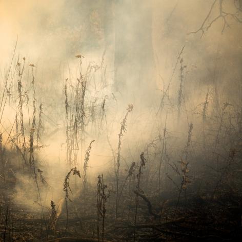 Jane Fulton Alt, Burn No. 30, fire, landscape, Sous Les Etoiles Gallery