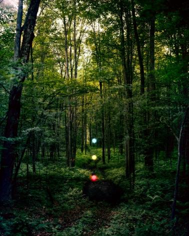 Barry Underwood, Scenes, Barnett Newman, 2012, Sous Les Etoiles Gallery