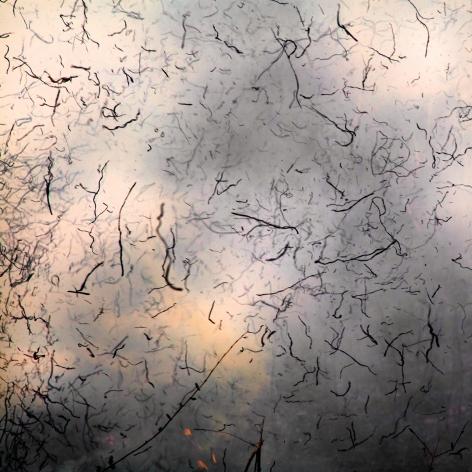 Jane Fulton Alt, Burn No. 98, 2012, fire, landscape,  Sous Les Etoiles Gallery