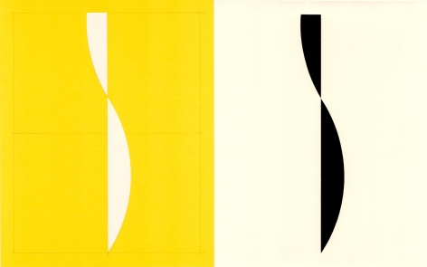 Richard Caldicott, B/W photogram and paper negative (43), 2013, Sous Les Etoiles Gallery