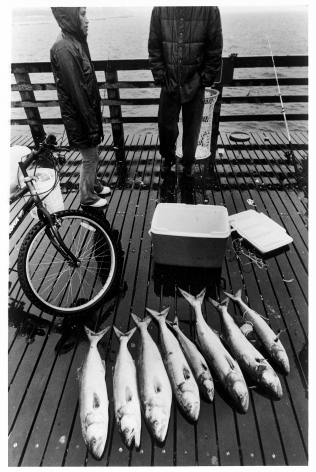 Sous Les Etoiles Gallery, Caught Fish, Harvey Stein, Coney Island