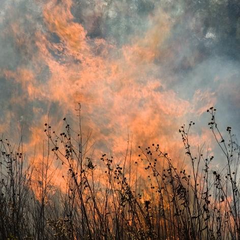 Jane Fulton Alt, Burn No. 74, 2009, fire, landscape, Sous Les Etoiles Gallery