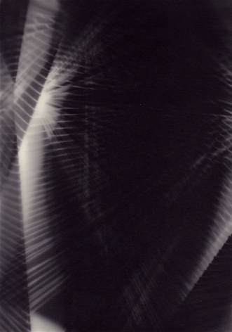 Richard Caldicott, Photogram, Recent Work 2010-2013, Sous Les Etoiles Gallery