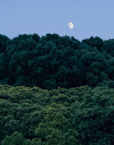 Breezeless, Taishi Hirokawa, Time and Tide, 2006, Sous Les Etoiles Gallery