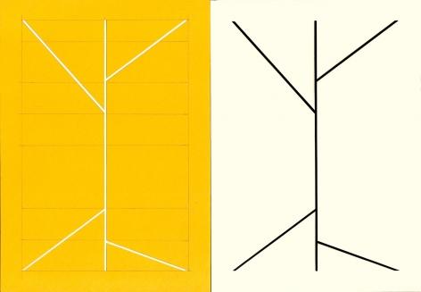 Richard Caldicott, photogram and paper negatives, 2013, Sous Les Etoiles Gallery, yellow