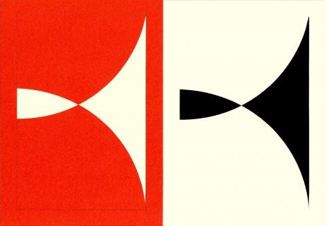 Richard Caldicott, photogram, paper negative, unique, Sous Les Etoiles Gallery, orange, 2014