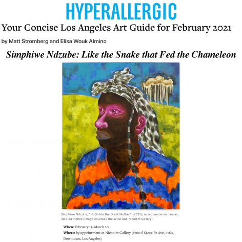 Simphiwe Ndzube in Hyperallergic's Concise Art Guide for Los Angeles in February 2021