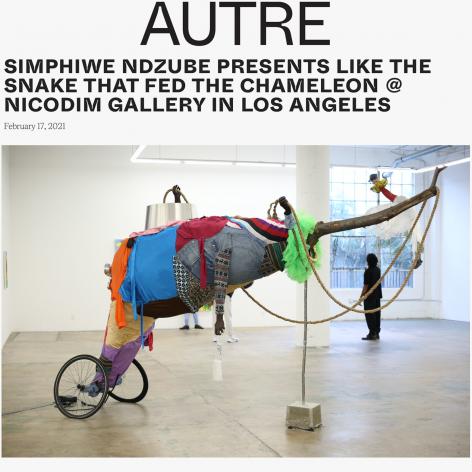 Simphiwe Ndzube Presents Like the Snake that Fed the Chameleon