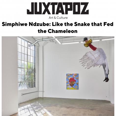 Simphiwe Ndzube: Like the Snake that Fed the Chameleon