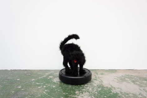 Mattia Biagi Lugosi 2019 Sculpture Nicodim Gallery Los Angeles Cat Roomba