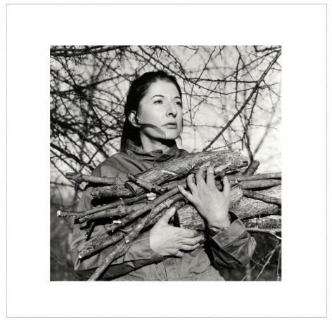 Portrait with Firewood, 2009