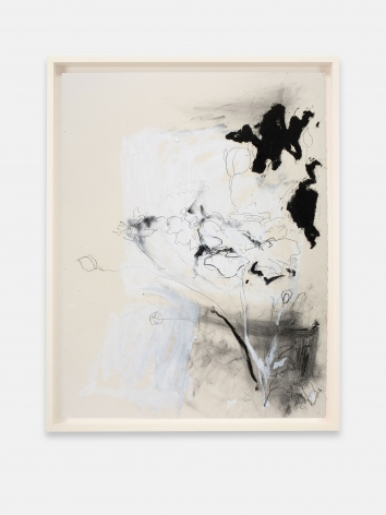 """ALT=""""Joseph Havel, First Flowers (S.F.) 3, 2017, Graphite and oil paint on paper"""""""
