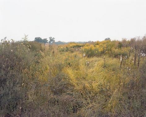 Joel Sternfeld September 27, 2006, The East Meadows, Northampton, Massachusetts