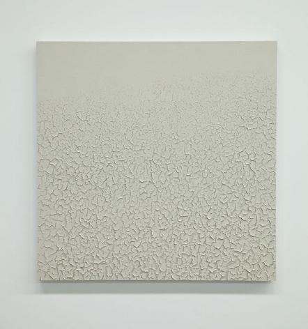 Tom Friedman Light Gray Mudscape, 2014