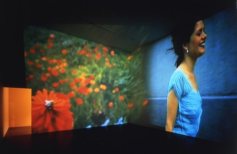Pipilotti Rist Ever Is Over All, 1997