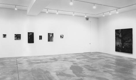 Ellen Berkenblit, Albert Oehlen, Alexis Rockman, Philip Taaffe, Christopher Wool, Installation view