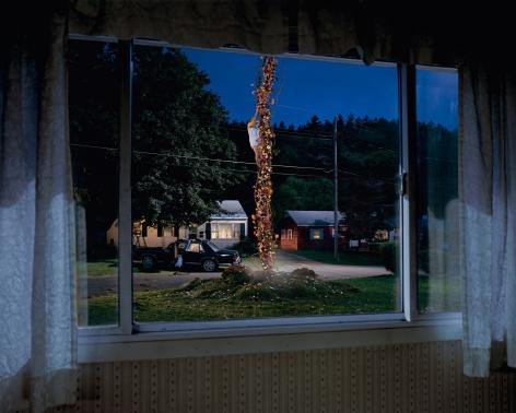 Gregory Crewdson, Untitled (flower beanstalk), 2001