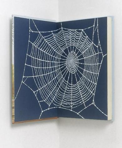 Steve Wolfe Untitled (Charlotte's Web), 1994-1995