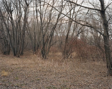 Joel Sternfeld March 30, 2006, The East Meadows, Northampton, Massachusetts