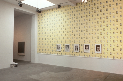Larry Clark, Robert Gober, Mike Kelley, Jeff Koons, Cady Noland, Richard Prince, Cindy Sherman and Christopher Wool, Installation view