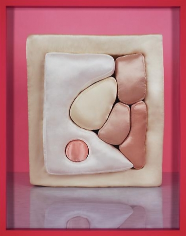 Elad Lassry Pillow, 2010