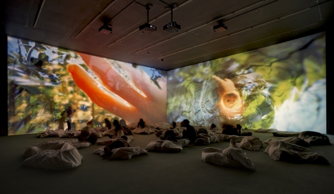 Pipilotti Rist, Worry Will Vanish, 2015