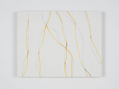 Zeng Hong United Lines (yellow and blue), 2018