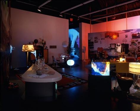 Pipilotti Rist, Himalaya's Sister's Living Room, New York, 2000