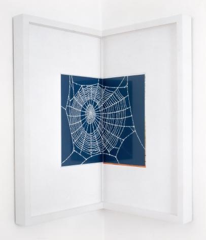 Steve Wolfe, Untitled (Charlotte's Web), 1994