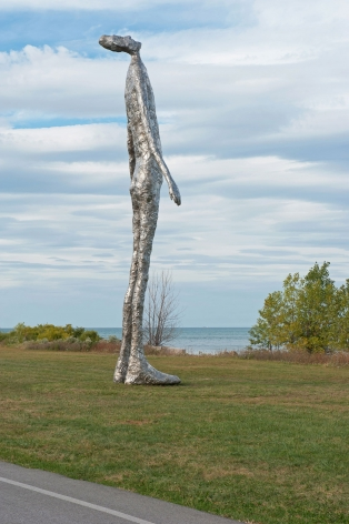 Tom Friedman, Looking Up,2015
