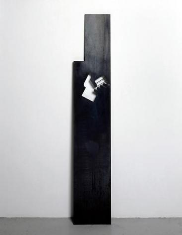 Roger Hiorns L'instant, 2004