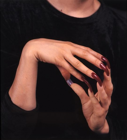 Janine Antoni Ingrown, 1998
