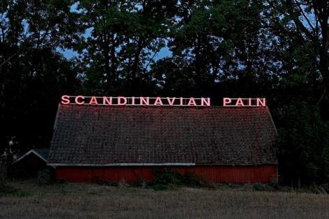 Ragnar Kjartansson Scandinavian Pain, 2007