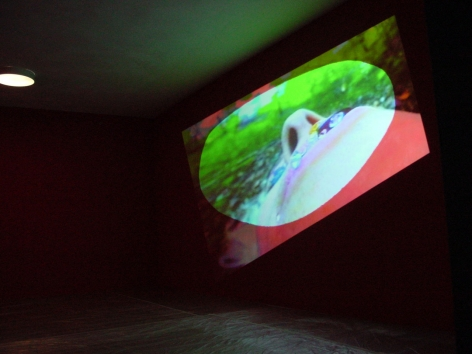 Pipilotti Rist, Blauer Leibesbrief (Blue Bodily Letter), 1992/98