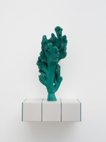 Zhang Ruyi Individual Plant—24, 2019