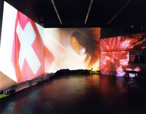 Pipilotti Rist Herbstzeitlose: (Saffron Flower or Fall Time Less)