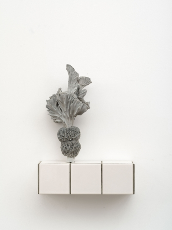 Zhang Ruyi Individual Plant—17, 2018