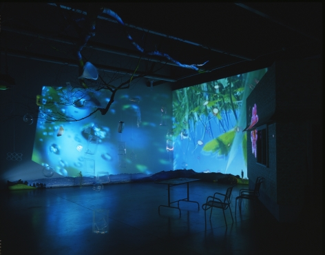 Pipilotti Rist Herbstzeitlose (Saffron Flower or Fall Time Less), 2004