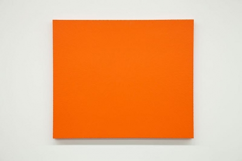 Tom Friedman Bloom, 2014