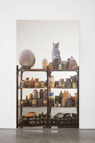 Michelangelo Pistoletto, Scaffali– Accademia de Bellas Artes, La Habana con uovo, 2015